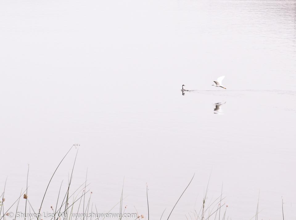 Lake Hodges, San Diego, CA.