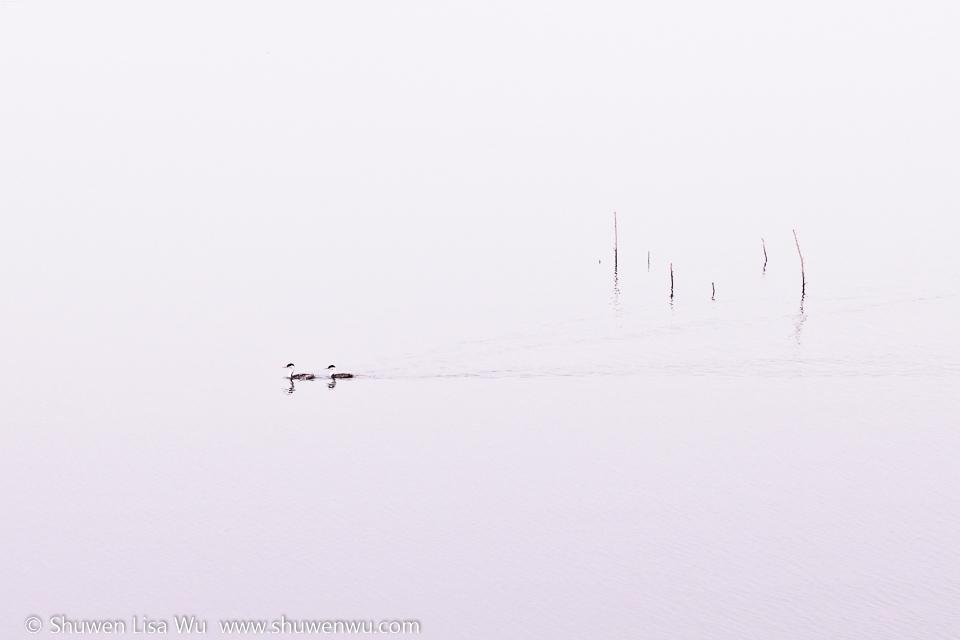 Morning Haiku II -- Lake Hodges, San Diego, CA.