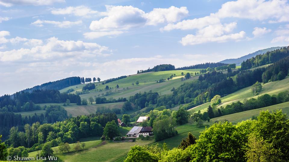 Black Forest Landscape, Germany.