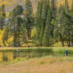 Angler at South Fork Bishop Creek, South Lake Road, Bishop, California, September 2016.