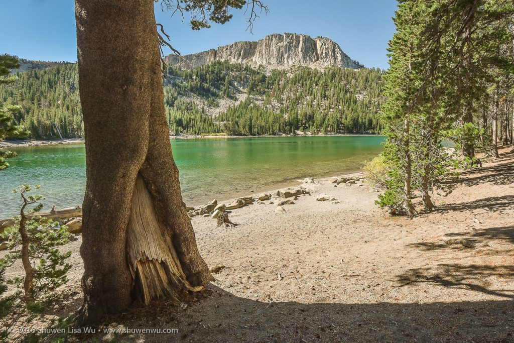 Southern part of the Mammoth Crest seen from McLeod Lake, Mammoth Lakes, California, September 2016.