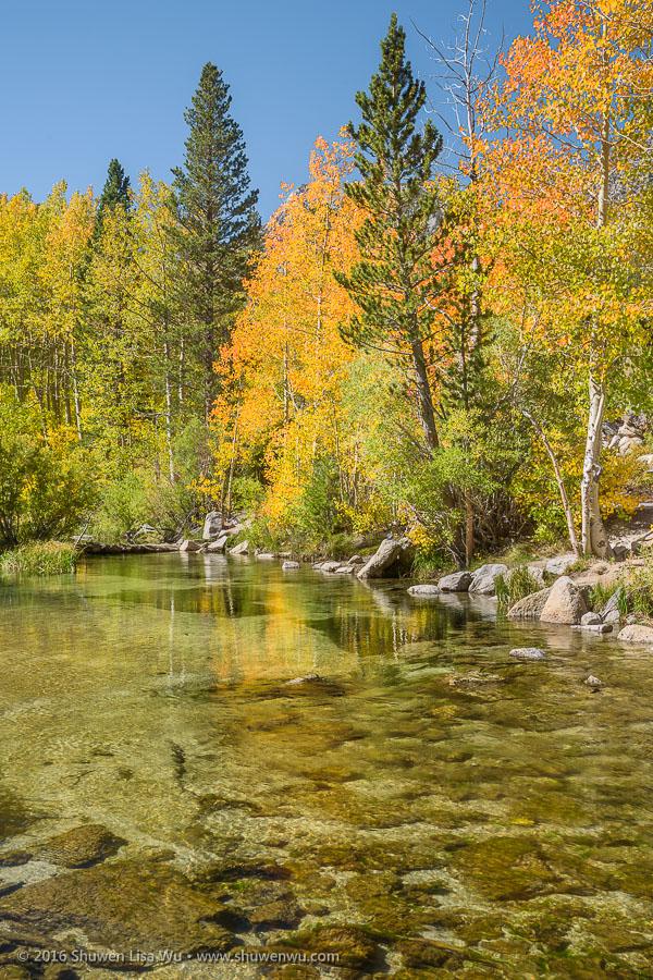 Middle Fork Bishop Creek near Lake Sabrina, Bishop, California, September 2016.