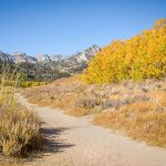 Trail at North Lake, Bishop, California, September 2016.