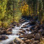 South Fork Bishop Creek by South Lake Road, Bishop, California, September 2016.
