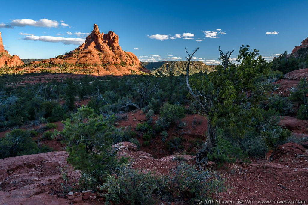 Bell Rock from Yavapai Point